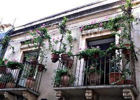 Come scegliere i fiori per il balcone?