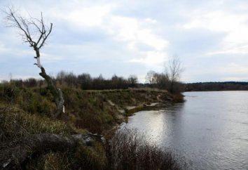 Río Sozh – uno de los ríos más bellos de Belarús