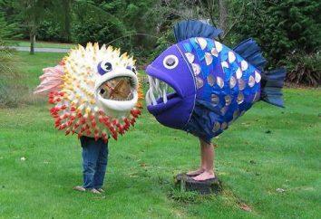 fantasia de peixe para meninas com suas mãos: a recomendação para a fabricação de