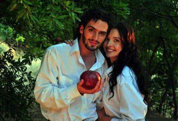 """Serial """"Pomegranate Taste"""": rôles et acteurs"""