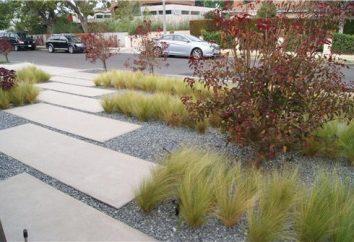 ścieżki ogrodowe wykonane z betonu z rękami: przewodnik, opinie, zdjęcia. Skład betonu ścieżek ogrodowych