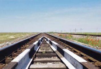 Kolei Transsyberyjskiej: perspektywy rozwoju, wartość. Sposoby poprawy efektywności