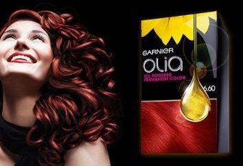 Nouveau développement: teinture pour les cheveux « Garnier Olia » (logement)