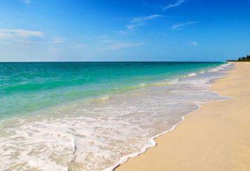 ¿Por qué sueño de una playa? Sueño libro le dirá la respuesta