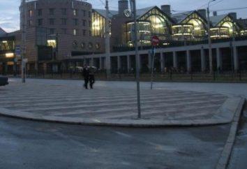 St. Petersburg Teilchen – Metro Ladoga