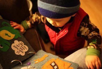 Desenvolvendo um livro suave com suas próprias mãos: idéias, aulas de mestrado