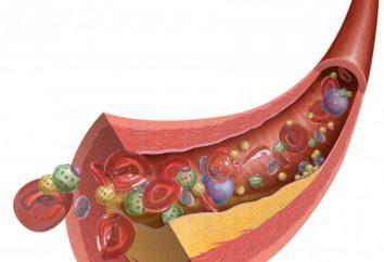 cibi sani che riducono il colesterolo nel sangue