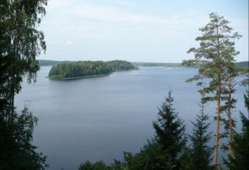 Lake Sapsho: description, photo. Repos sur le lac