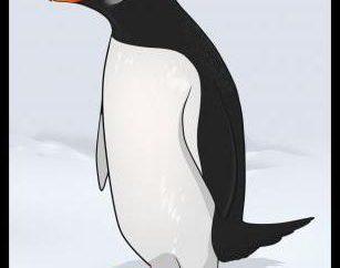 Proste wskazówki, jak narysować ołówkiem etapy pingwin