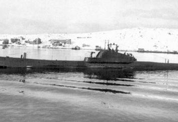 floty podwodnej Rosji: Historia