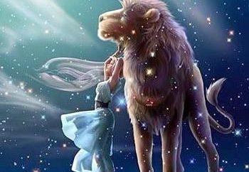 Kobiety-Lwy rozpalają pasje
