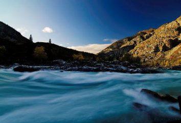 Il fiume Katun. Rafting sul fiume Katun. Mountain Altai – Katun