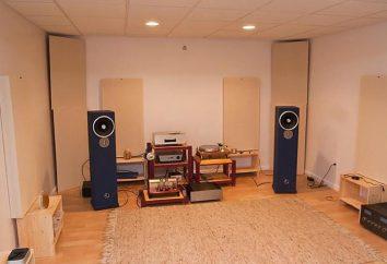 Typy głośników: projektowanie, ocena, specyfikacje