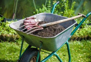 Wie Kompost mit eigenen Händen zu machen?