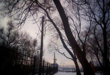 Voronezh: clima, recursos, ecologia