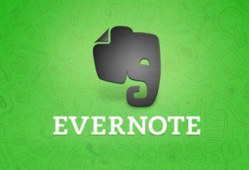 Evernote – co to jest? Evernote – jakiego rodzaju programu, jak go używać? Zgłoszenie o programie Evernote