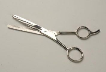 Assottigliamento forbici – per i professionisti
