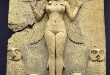 Succubus jest demonem pożądania i rozpusty z średniowiecznych legend