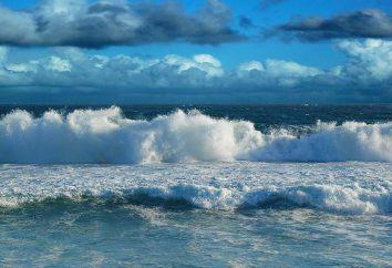 O que é mais – do Pacífico ou do Oceano Atlântico? Qual é o maior e mais profundo do oceano na Terra?