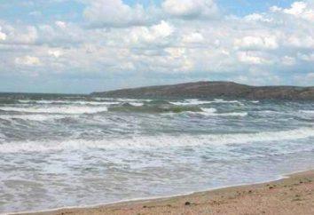 "Riposa in Primorsk: centro ricreativo, ""surf"" ""Pearl"", ""Primorsk"""