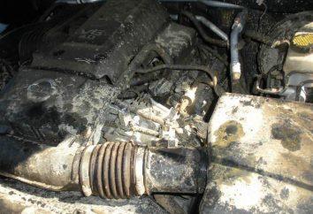 Cleaner silnika. Jak umyć silnik? chemia samochód