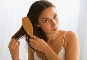 Massagekamm: Wie jeden Tag ein Zubehör für die Haarpflege wählen?