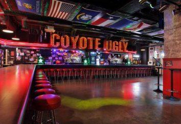 """Bar """"Coyote Ugly"""": sur l'institution, des caractéristiques, des critiques"""