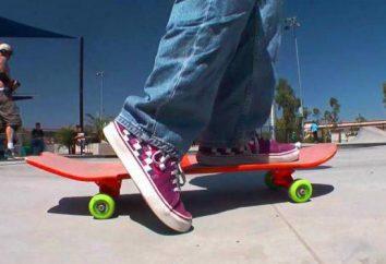 Types populaires de planches à roulettes – ce qu'ils sont