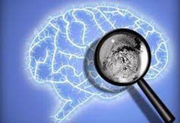exame psicológico forense: fatos úteis