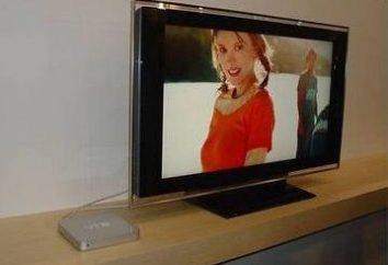 Plazmowe telewizory Samsung: wybrane funkcje