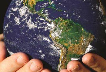 Sezioni di ecologia e una breve descrizione. I principali temi ambientali