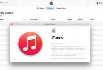 iTunes-Programm. Update auf die neueste Version leicht!