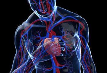 Klasyfikacja arytmii serca