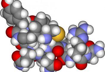 Hormonu antydiuretycznego (ADH). Wydzielanie hormonu antydiuretycznego