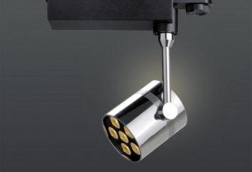 apparecchi di illuminazione della pista del LED per le case