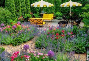 giardini vegetali. Che cosa piantare nel paese?