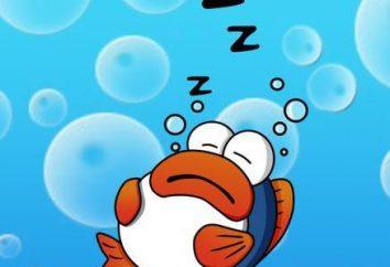 sen ryby są zmęczeni. Jako snu ryb?