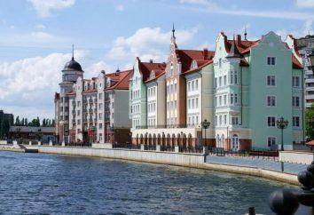 Tours Kaliningrad et la région