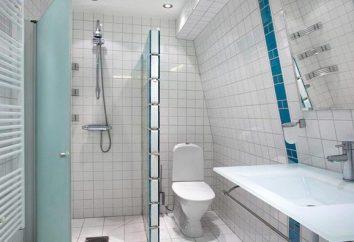 Toaleta Ifo Frisk – obecna jakość szwedzki