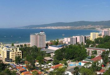 """L'hôtel """"Delfin"""" (Bulgarie, Sunny Beach): description, services, avis. Hôtel Delfin 3 *"""