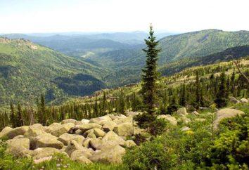 Réserve Tigireksky: aires protégées du territoire de l'Altaï