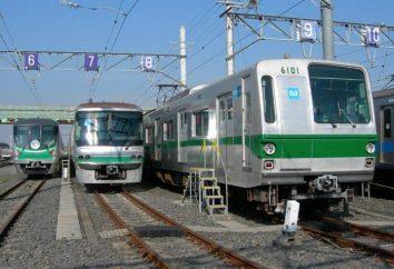 Tokyo Metro: Opis, wskazówki, porady