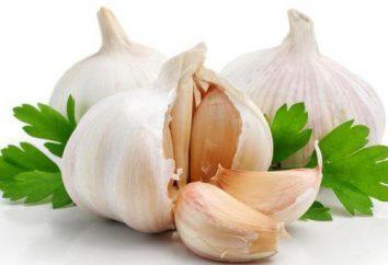 Cresciamo aglio: la descrizione della varietà, selezione, particolarmente in crescita