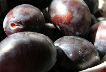 Colhidos geléia de ameixa húngaro: receitas para todas as ocasiões