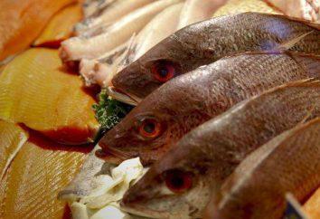 Les types de poissons et de leur habitat