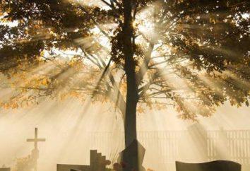 Sogno libro. Funeral. interpretazione dei sogni