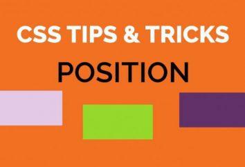CSS stanowisko: przykłady