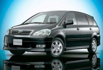 « Toyota Ipsum » – une voiture pour Voyage confortable