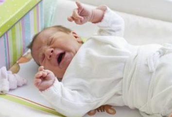 O noivo constantemente mole e geme. Por que o recém-nascido geme e empurra um sonho durante a alimentação?