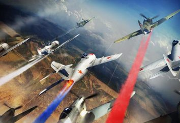 Russian Air Force Day